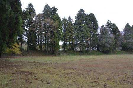 20121111御茶屋御殿16