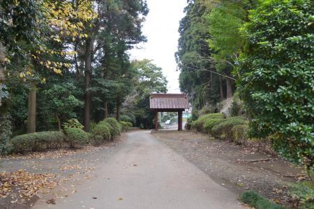 20121111金光院12