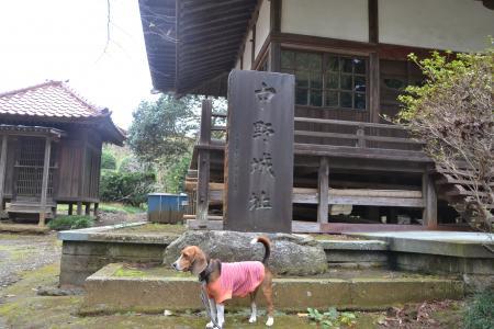20121111中野城址04
