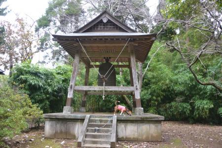 20121111中野城址10
