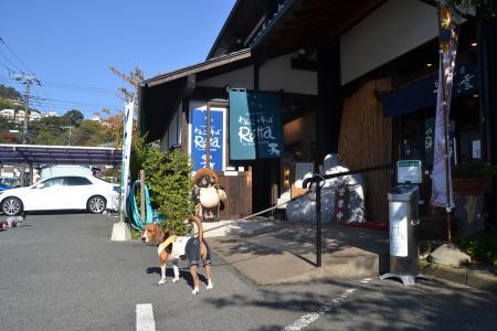 20121120伊豆旅行09