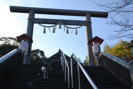 20121120伊豆旅行20