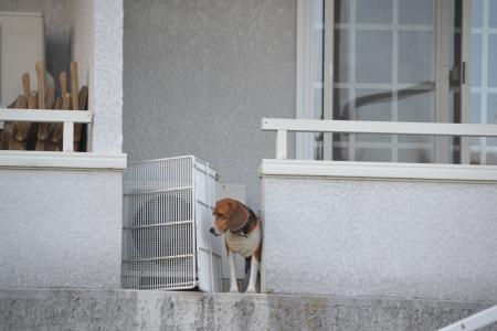 20121120伊豆旅行30