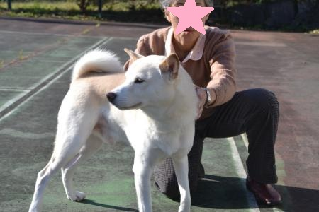 20121121伊豆旅行06