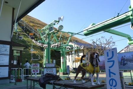 20121121伊豆旅行16