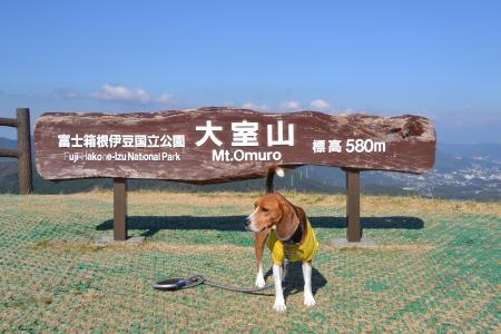 20121121伊豆旅行25