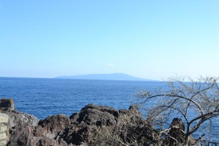 20121121伊豆旅行41