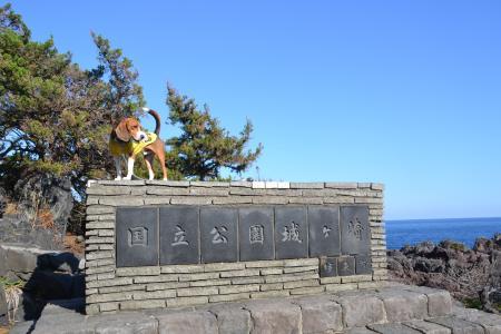 20121121伊豆旅行39