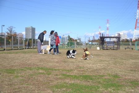 20121127北総15
