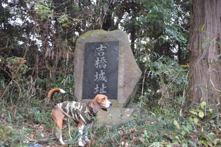 20121203吉橋城址05