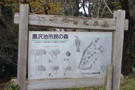 20121203黒沢池市民の森02