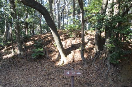 20121207増尾城址18