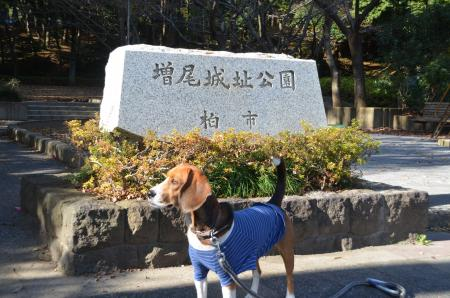 20121207増尾城址19