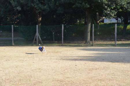 20121207柏の葉公園ドッグラン20