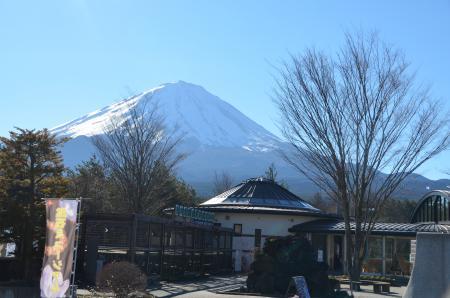 20121211本栖湖04