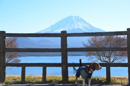 20121211本栖湖08