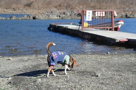20121211精進湖04