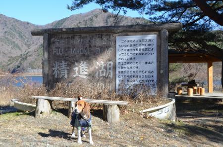 20121211精進湖91