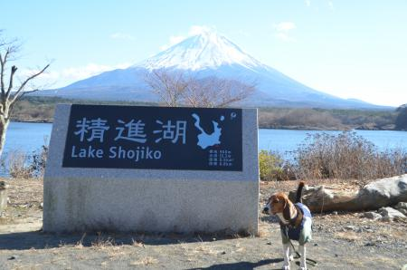 20121211精進湖18