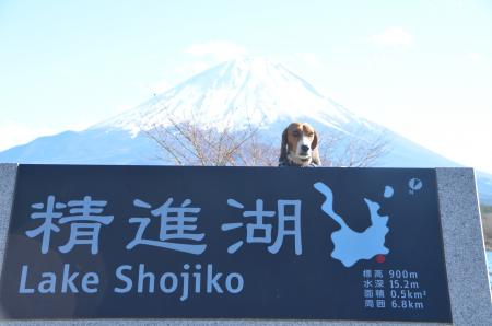 20121211精進湖