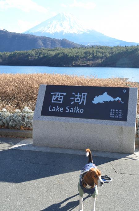 20121211西湖03