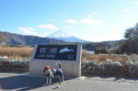 20121211西湖01