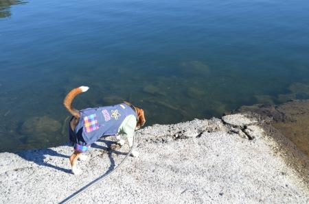 20121211西湖12