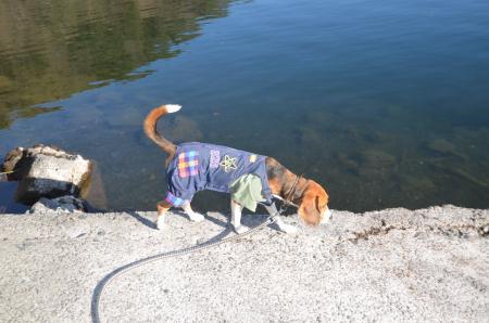 20121211西湖11