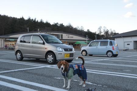 20121211道の駅富士吉田ドッグラン20