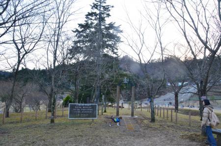 20121216宮ケ瀬湖イルミ06