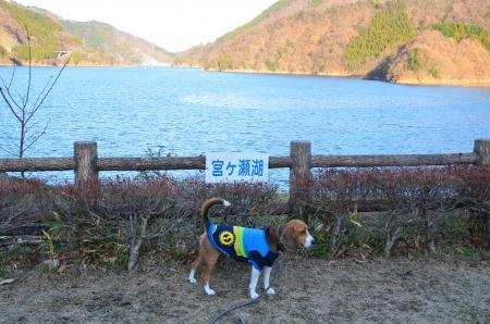 20121216宮ケ瀬湖イルミ04