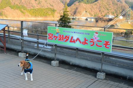 20121216宮ケ瀬湖イルミ03