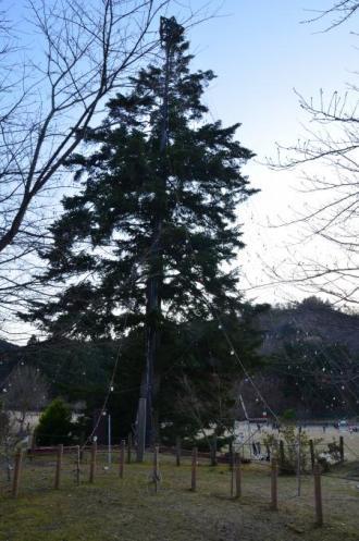20121216宮ケ瀬湖イルミ07
