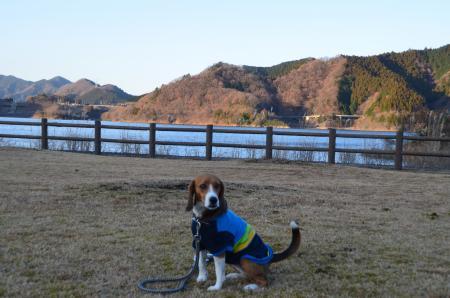 20121216宮ケ瀬湖イルミ08