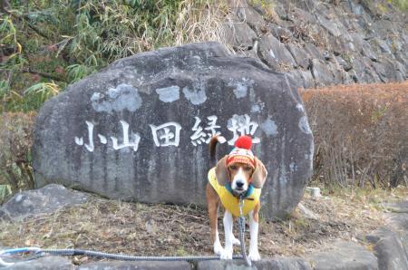20121219小山田緑地01