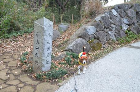 20121219小山田緑地02