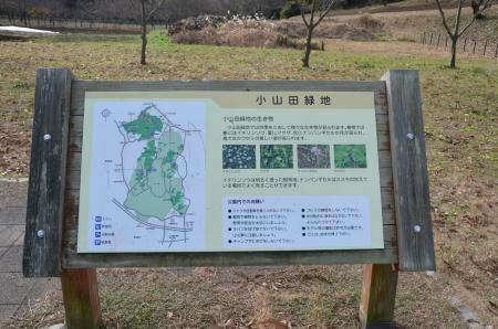 20121219小山田緑地13