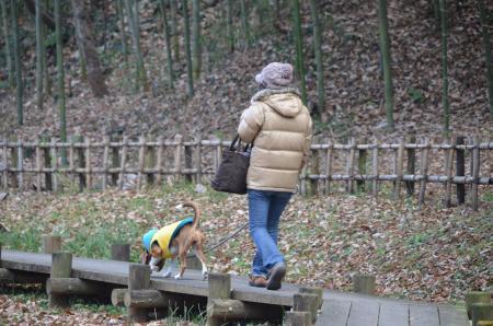 20121219小山田緑地25