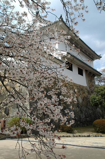20120407 姫路城 166