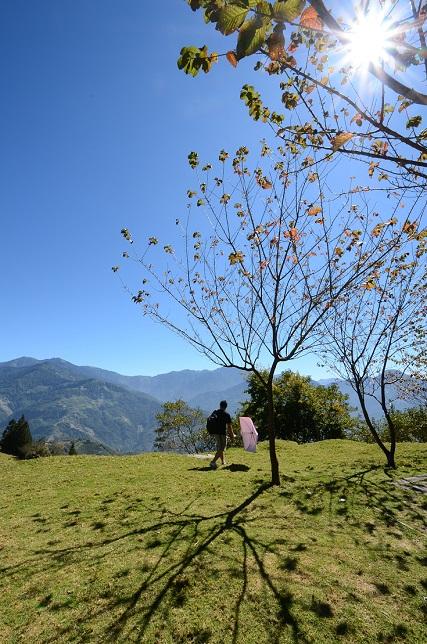 高原の秋(2)