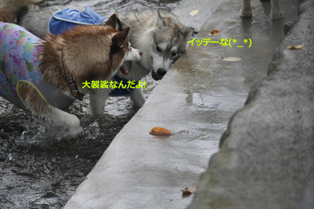 IMG_2409_edited-2.jpg