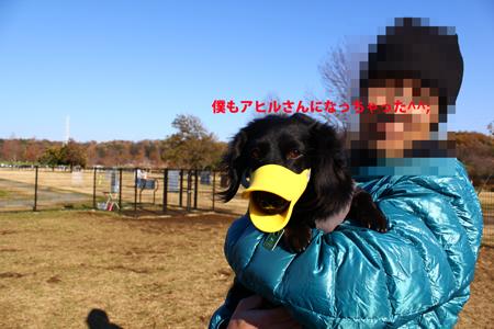 IMG_5932.jpg