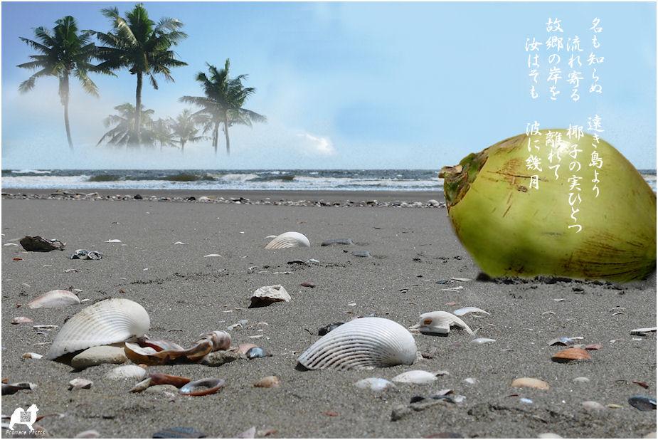 島崎 藤村 の 椰子 の 実
