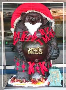 タヌキ-2013のクリスマス