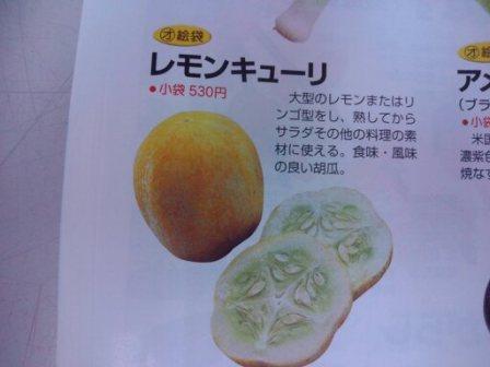 レモンきゅーり