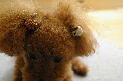 ナナの犬のリボン