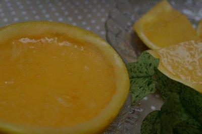 ブレープフルーツ2