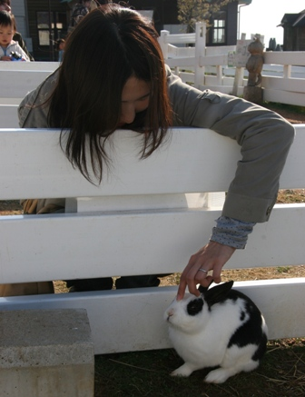 ウサギと私