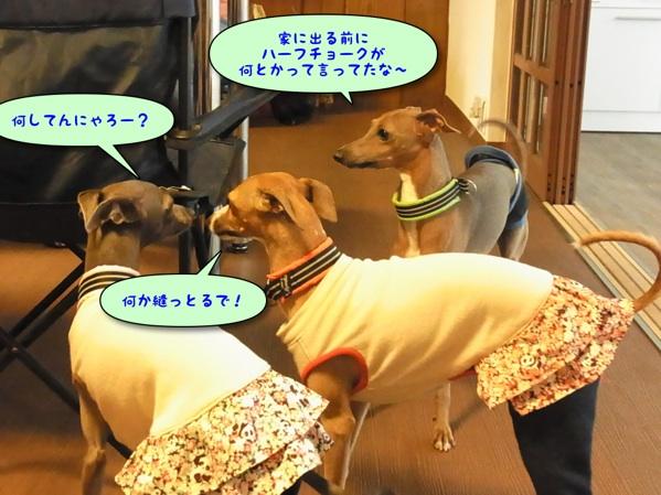 fc2blog_20120828093256e19.jpg