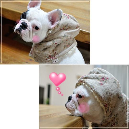 防空頭巾?^^